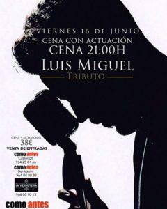 Cena Actuación Concierto Tributo a Luis Miguel